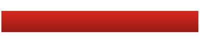 MSV Snaren logo